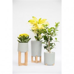Design by: Josefina Anglada – Family of pots for hydroponics