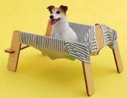 Torafu Architects – Jack Russell Terrier – Wanmock