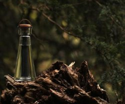 Bamboo Filter Water Bottle – The world's first bamboo filtered water bottle