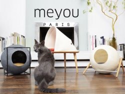 Meyou: Classy Furniture for Discerning Cat