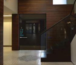 Valerii Kuznetsov – Smart Door
