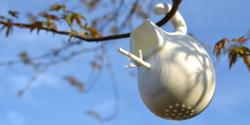 Matthijs Kok – Cubify | Birdhouse