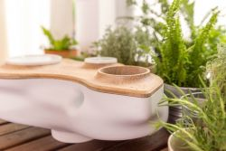 BIOVESSEL – An Ecosystem Powered by Food Waste – Kickstarter