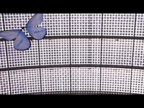 Festo – eMotionButterflies – Robotic Butterfly