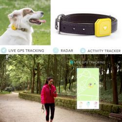 Findster Duo – The 1st GPS Pet Tracker Free of Monthly Fees! – Kickstarter