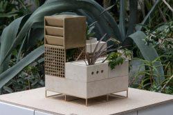 Maxim Scherbakov – Plantscape