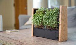 EcoQube Frame – BEST vertical garden for veggies & succulents – Kickstarter