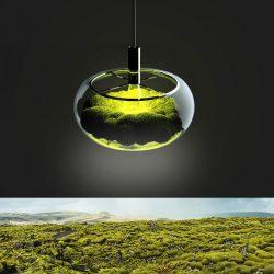 Marko Vuckovic – Mosslamp