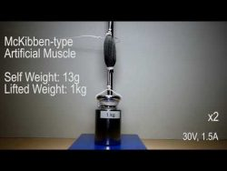 3D printed synthetic muscle