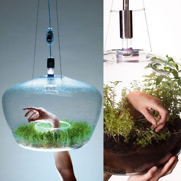 KRISTÝNA MARKVARTOVÁ – glass greenhouse lamp